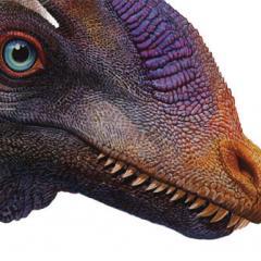 Flying dinosaurs talk