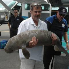 Trevor Long holding a dugong